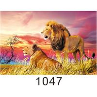 Quality Custom 3D Lenticular Printing 60*80cm / Wall Poster 3D Animals Photos for sale