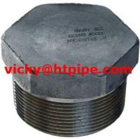 Quality duplex stainless ASTM A182 F53 bull plug for sale
