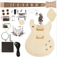 Quality Double Cutaway 22 Fret DIY Electric Guitar Kits With 2 Humbucker AG-DU1 for sale