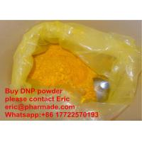 Quality DNP Anti Aging Yellow Effective Powder Oral Steroids Bodybuilding 2, 4-Dinitrophenol DNP for sale