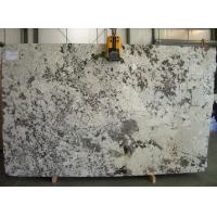 Buy Elegant Aspen White Granite Stone Slab Countertop Stone Vanity Tops at wholesale prices