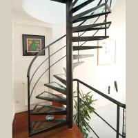 Quality Customized Spiral Stairs Railing Balustrade Spiral Staircase with Glass Steps for sale
