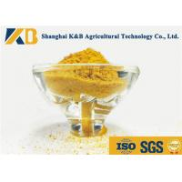 Quality High Protein Grain Origin Corn Gluten Meal Animal Feed For Nutrition Additive for sale