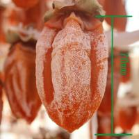 Quality Natural and Handmade Dried Persimmons for sale
