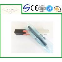 Quality A6650170221 Delphi Fuel Injector - Ssangyong Rexton Kyron , Stavic , Rodius , EJBR04401D for sale
