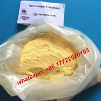 Quality Injectable Liquid Tren E 200mg Parabola Trenbolone Steroid Trenbolone Enanthate 200mg/ml for sale