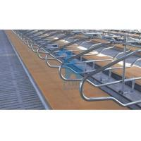 Quality Double Position Locking Feed Barriers Cattle Feeding Equipment With 6pcs Shackle for sale
