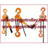 Quality Lever chain blocks price list for sale