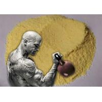 Quality Yellow Trenbolone Base Tren Anabolic Steroid Hormones Powder Bulking Cycle for sale
