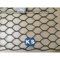 Quality Professional PVC Gabions Wire Mesh Box and Basket for Chicken Hexagonal Wire Netting for sale
