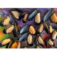 Quality Cooked Mussel Half Shell Mytilus for sale