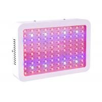 Quality Indoor Plant 300w Led Grow Light Full Spectrum For Greenhouse Fruit Vegetables for sale