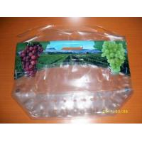 Quality new style anticorrosion grape bag,cherry bag,fruit bag for sale