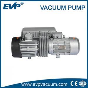China SV energy saving single stage rotary vane mechanical vacuum pump on sale