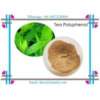 Quality Brown Yellow Natural Vitamin Powder Natural Tea Polyphenols 99.9% for Health Products CAS 84650-60-2 for sale