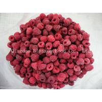Quality IQF Frozen Raspberry for sale