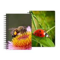 Quality 0.6mm PET Material 3D Lenticular Notebook For Office Stationery for sale