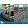 Buy cheap Individually Feeding Dairy Cow Headlock Stockade Plate Length 8 Meter from wholesalers