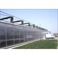 Anti Wind PC Sheet Greenhouse High Light Transmission Span Width 9.6 / 10.8 / 12m for sale