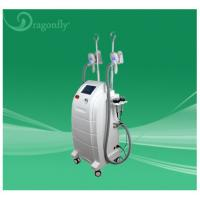 China Reducer & Belly Fats Reducing Freeze Fat Cryolipolysis Machine for Salon on sale
