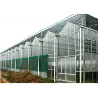 Quality Agricultural Polycarbonate Sheet Greenhouse Double Arch Multi Span Structure Frame for sale
