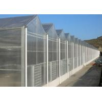Quality Single Layer Toughened Glass Greenhouse , Insulating Intelligent Greenhouse for sale