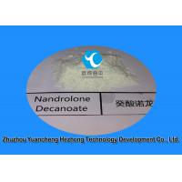 Quality 98% Deca Raw Steriod Powder Nandrolone Decanoate CAS 360-70-3 for Muscle Building for sale