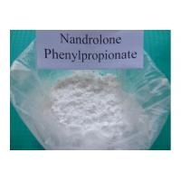 Buy 99% Assay Nandrolone Phenylpropionate , CAS 62-90-8 NPP Durabolin Steroid Powder at wholesale prices