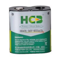 China Professional Li-MnO2 Cell Lithium Battery Pack Excellent Safety Performance on sale