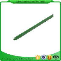 Quality Green Steel Garden Stakes PE Plastic Coated 8mm Diameter , 60cm Length  Plant support Steel with plastic coated for sale