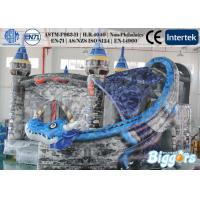 Quality Professional Personality Dragon Inflatable Slide Commercial With Slide for sale