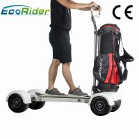 Quality 1000w Electric Ride On Golf Scooters 60-80km Mileage 4 Wheel Big Tire Electric Skateboard for sale