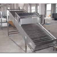 Quality Oranges Tomatoes Roller Conveyor Systems Fruit And Vegetable Processing Equipment for sale