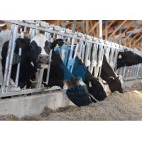 Quality Carton Steel Locking Feed Barriers , Adjustable Metal Cattle Feeding Gates for sale
