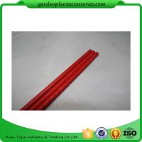Quality PE Coated Metal Garden Plant Stakes 8mm Diameter , 75cm Length Metal Garden Stakes  Lengt  Dia:11mm  Dia:11mm for sale
