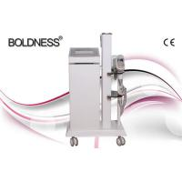 Quality Painless Beauty Salon Cryolipolysis Slimming Machine , Multifunction Beauty Equipment for sale