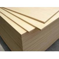 Quality Birch Plywood for Furniture/Birch Veneer Plywood for sale