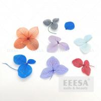 Quality Mixed Color Dry Flower Hydrangea Macrophylla Ortensia DIY Nail Art Decorations for sale