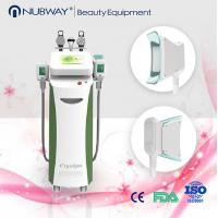 Quality Four handles Cryolipolysis / coolshape body slimming machine / fat freezing machine for sale