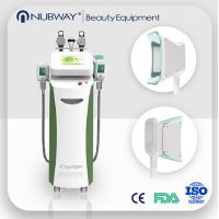 Quality Vertical Cryolipolysis machine therapy venus cryolipolysis fat freezing machine for sale