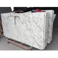 Quality Bath / Kitchen Andromeda White Granite Countertop 2.67g / Cm2 Bulk Density for sale