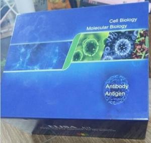 Quality Human Tumor Necrosis Factor Alpha(TNF-α) ELISA Kit for sale