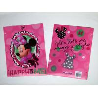 Hello Kitty Printing A4 size PP File Folder