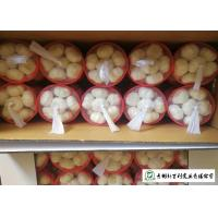 Quality Reducing Bacteria Fresh Organic Garlic 9 Months Shelf Life Supply For Supermarket for sale