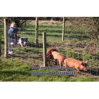 Quality Wire Stock Fencing 0.8m x 50m C8/80/15 - Pig Lamb Sheep Dog RABBIT FENCE FOR SALE for sale