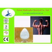 Quality Primobolan Steroids Methenolone Enanthate PharmacySteroids CAS 303-42-4 for sale