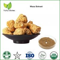 China Maca Extract,maca root powder,maca root extract,maca powder,organic maca powder on sale