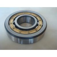 Quality FAG Bearing SL014880 for low noise and high speed electric motors for sale