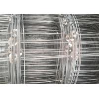 Quality Galvanized Cattle Wire Fence Hinge Joint For Livestock , 0.8-2m Width for sale