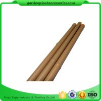 Quality Heavy Duty Bamboo Garden Stakes , Round Bamboo Stakes For Garden for sale